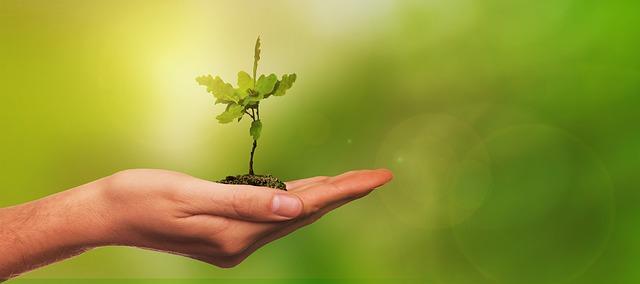 Grand Débat sur la Transition Écologique et Énergétique – 1ère partie
