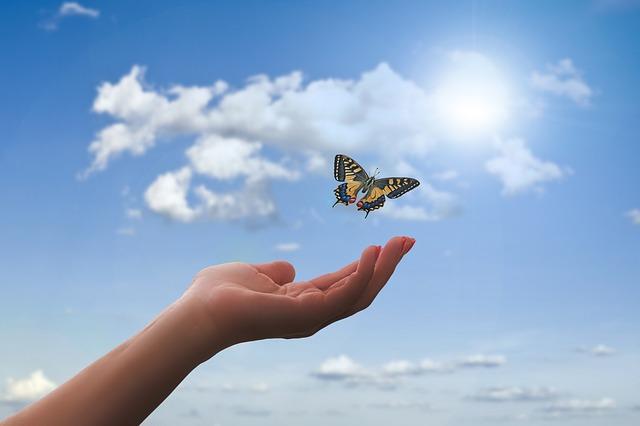 Grand Débat sur la Transition Écologique et Énergétique – 3ème Partie