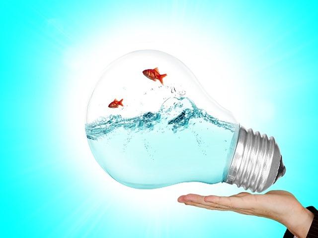Hydroélectricité : des nouvelles au fil de l'eau !