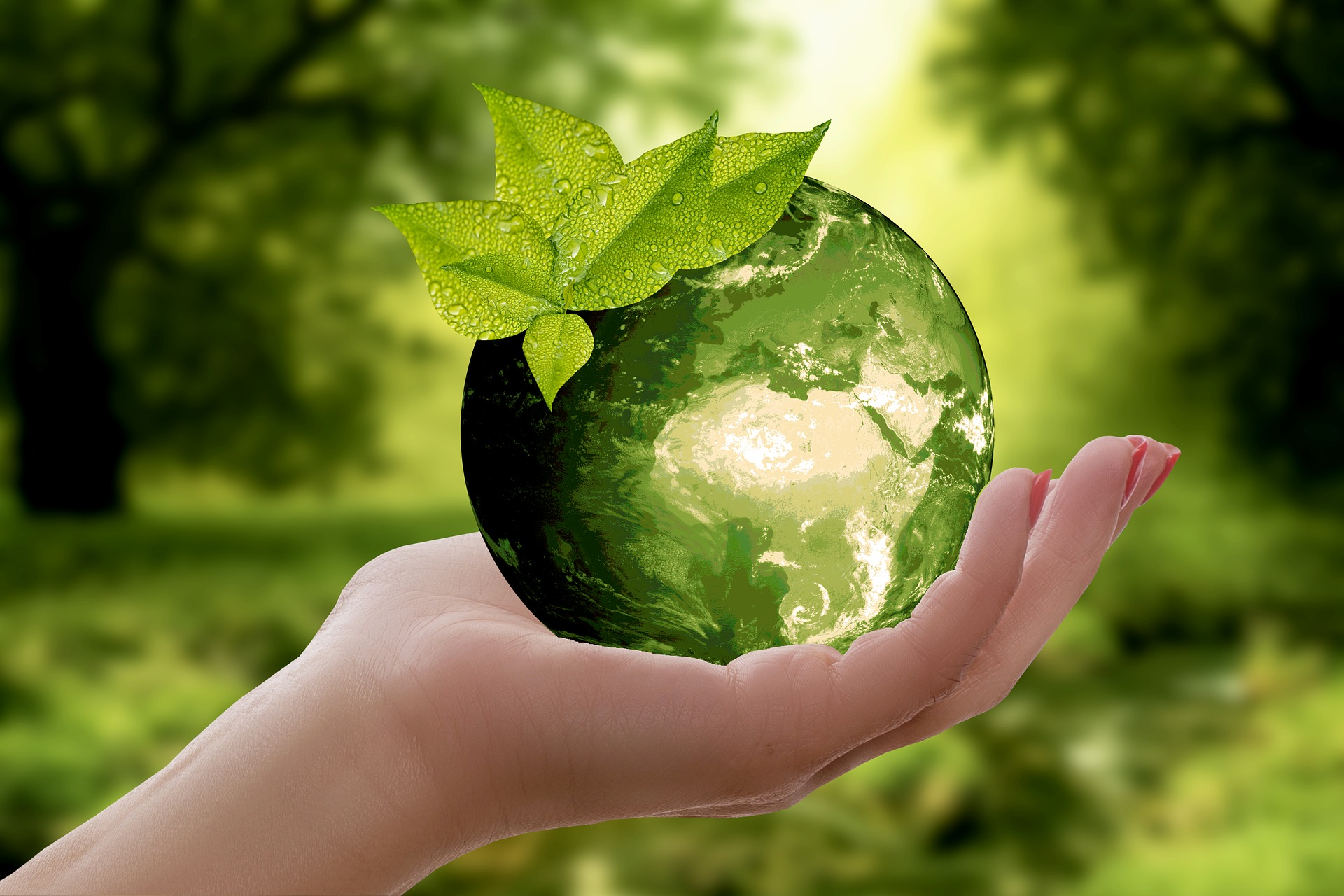 EMNE s'engage auprès de la Communauté de Communes Loue Lison pour l'élaboration du Plan Climat-Air-Énergie Territorial